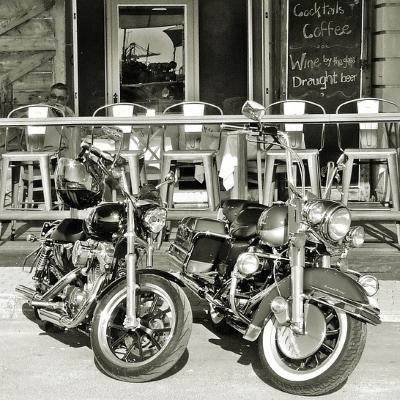 Easy Rider Trip Styles