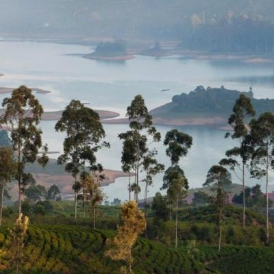 Un nuovo Paradiso Terrestre: apre il nuovo RIU Hotel in Sri Lanka News dagli Operatori