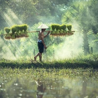 75 frasi da imparare per un viaggio nel Sud Est Asiatico Destinazioni
