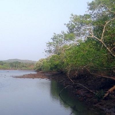 Bijagos, arcipelago sacro Tour Individuali e di Gruppo