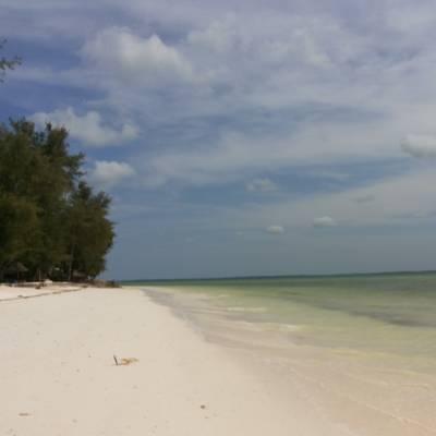 Palumbo Reef *** Uroa - Zanzibar Mare