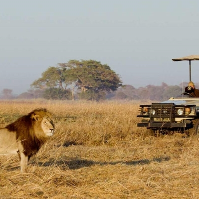 Il Meglio dello Zambia Safari