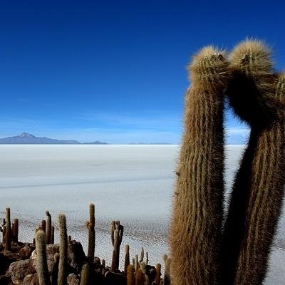 I tesori delle Ande