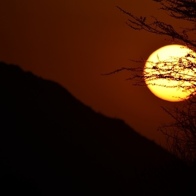 Safari Tsavo Est + Ovest + Amboseli Safari