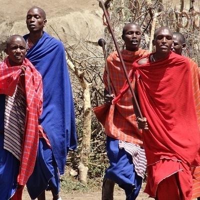 Safari Masai Mara e Safari su misura
