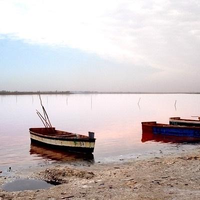 L'Africa autentica dal Sahel alle Isole Bijagos