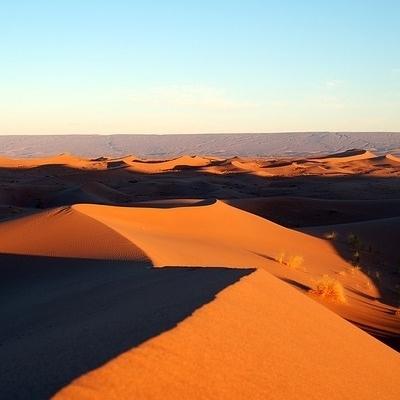 Meharee tra le dune