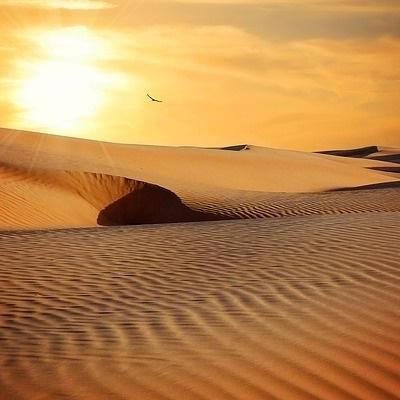Deserto Nubiano e Mar Rosso Deserto