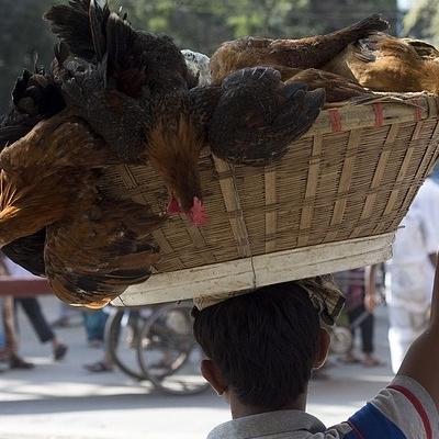 L'India che fu Tour Culturali