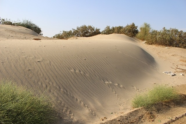 Tesori nel deserto Tour Individuali e di Gruppo