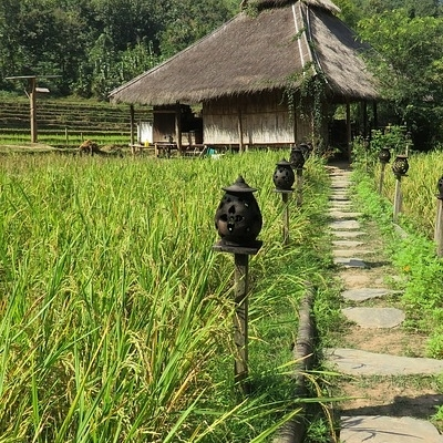 Viaggio nel nord del Laos con trekking Trekking