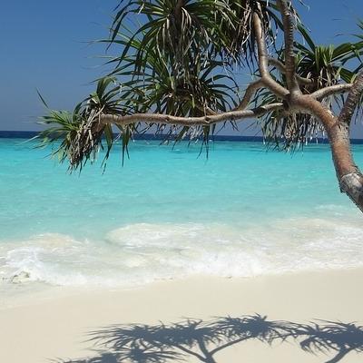 Maldive: Falhumaafushi Island