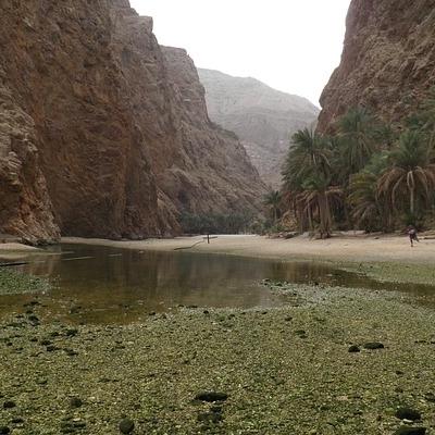Oman: All'insegna della natura