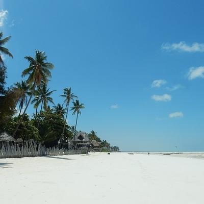Simba Safari e mare a Zanzibar