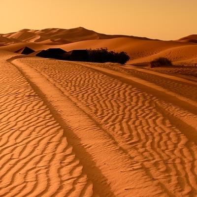 Oriental Desert Express Deserto