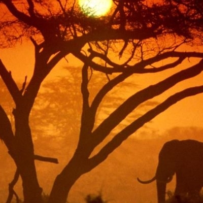 KENYA - Trekking e mare Trekking