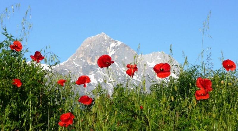 Parco Nazionale d'Abruzzo, Lazio e Molise Trekking