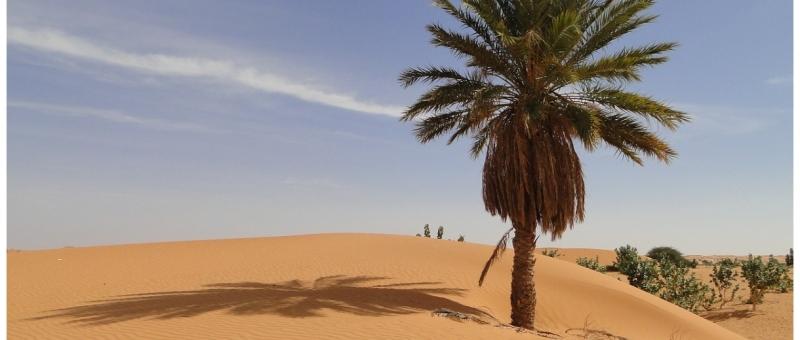 Nel deserto del Mauri Deserto
