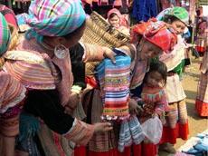 Emozioni in Vietnam Tour Culturali