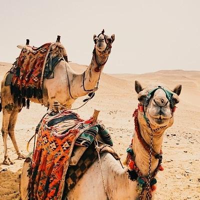 Spedizione nel Sahara centrale Deserto